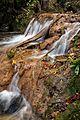 Бањски поток 2.jpg