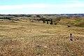 Вид при выезде из Медногорска - panoramio.jpg