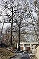 Віковий дуб-красень 07.jpg