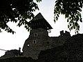 """Закарпатська область с. Невицьке """"Руїни замку Невицький"""" - panoramio - badzeluk.jpg"""