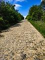 Кам'яна дорога зі Шумовець в Ружичанку, фото 1.jpg