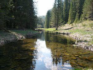 Kishertsky District - Kishert River, in Kishertsky District