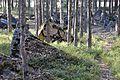 Линия Маннергейма - panoramio (14).jpg