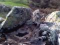 Мочукови камъни.png