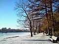 Набережная Средней Невки зимой.JPG