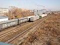Новосибирск западный, переходной мост - panoramio.jpg