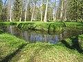 Ораниенбаум. Пруды восточнее Липовой аллеи01.jpg