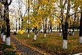 Парк Магдагачи осенью.jpg