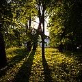 Парк в усадьбе Яндоурова в селе Ракоболь, Ярославская обл.jpg