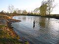 Река Шаква.jpg