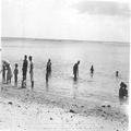 ילדי הגולים בחוף הים במאוריציוס (אלבום מחנה המעצר במאוריציוס חיי המחנה מ-26 בדצמ-PHAL-1615813.png