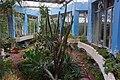 台北植物園多肉植物溫室 Succulent Plant Greenhouse in Taipei Botanical Garden - panoramio.jpg