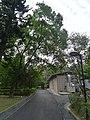 基因體中心後 - panoramio.jpg
