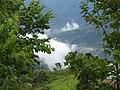 大隘村 Daai Village - panoramio (1).jpg