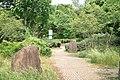 東高根森林公園 - panoramio (52).jpg