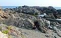 潮岬に下りてみる - panoramio.jpg