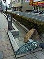 長尾街道 松原市にて Nagao hwy. 2012.1.14 - panoramio.jpg