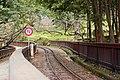 阿里山櫻花鐵道 Alisan Sakura Railway - panoramio.jpg