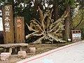 雪霸木屋區 Sheipa Farm Cabin Area - panoramio.jpg