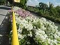 0032Views of Agnaya irrigation canals 33.jpg