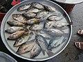 06555jfCandaba, Pampanga Market Fishes Foods Landmarksfvf 12.jpg