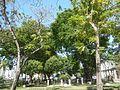 0822jfIntramuros Manila Landmarks Buildingsfvf 30.jpg