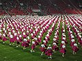 15. sokolský slet na stadionu Eden v roce 2012 (52).JPG