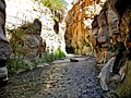 19 Wadi Bin Hammad Tropical Rain Forest Trail - In the Siq - panoramio.jpg
