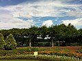 1 Todoroki, Nakahara-ku, Kawasaki-shi, Kanagawa-ken 211-0052, Japan - panoramio (7).jpg