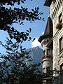 2008 windowboxes Switzerland 2741756605.jpg