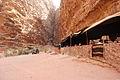 20100927 wadi rum131.JPG