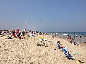 Island Beach State Park - Bathing beach at Island Beach State Park on a sunny summer day