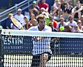 2013 US Open (Tennis) - Albert Ramos (9667953080).jpg