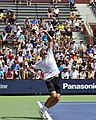 2013 US Open (Tennis) - Qualifying Round - Ivo Karlovic (9699288475).jpg