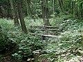 20140809140DR Röhrsdorf (Dohna) Schloßpark Röhrsdorfer Grund.jpg