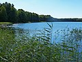 2015-09-28 Rochowsee 013.jpg