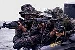 2015.9.2.해병대 1사단-상륙기습훈련 2nd Sep, 2015, ROK 1st Marine Division - amphibious warfare training (20515128973).jpg