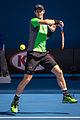 2015 Australian Open - Andy Murray 5.jpg