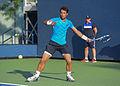 2015 US Open Tennis - Qualies - Jose Hernandez-Fernandez (DOM) def. Jonathan Eysseric (FRA) (20342238284).jpg