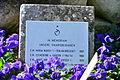 2016-03-31 GuentherZ Wien11 Zentralfriedhof (26) Ruhestaette Ordensfrauen der Gesellschaft vom Heiligen Herzen Jesu.JPG