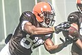2016 Cleveland Browns Training Camp (28075050094).jpg