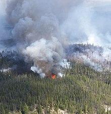 70dbd6c58a9 Bearskin Fire. From Wikipedia ...