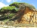 2018-01-07 Eroding cliffs to the back of Praia Maria Luisa, Albufeira (1).JPG
