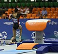 2019-06-28 1st FIG Artistic Gymnastics JWCH Women's All-around competition Subdivision 5 Vault (Martin Rulsch) 245.jpg