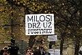 25. výročí Sametové revoluce na Albertově v Praze 2014 (6).JPG