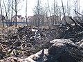 25 апреля 2010 года. Невская Дубровка. На этом снимке - свалка отходов на полях, рядом с местом строительства коттеджей. - panoramio (4).jpg