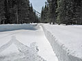 4-9-12-plowing-near-logan-creek-4 (6919553436).jpg