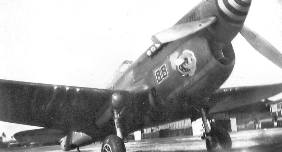 43d Fighter Squadron P-40N Warhawk May 1944