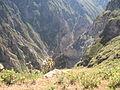 48 kanjon Colca (3).jpg