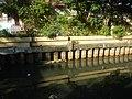 7785San Miguel, Manila Roads Landmarks 15.jpg